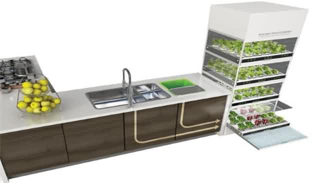 Concepto nano garden