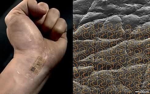 Circuitos en la piel-logo-2